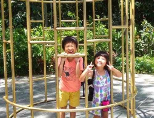 シンガポールに母子共に2ヵ月間出張中のキッズシッターをお願いしました。